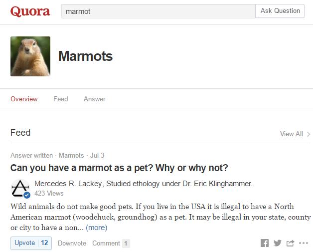 Recherche sur Quora